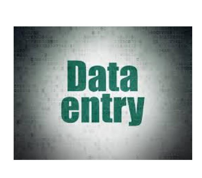 r non voice projects offline online data entry projects