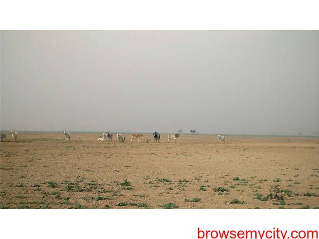 3389 Sq, Yards Commercial Plot for SALE at Dholera Smart