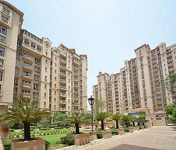DLF Beverly Park 1 for Rent | 3 BHK Apartments DLF Beverly