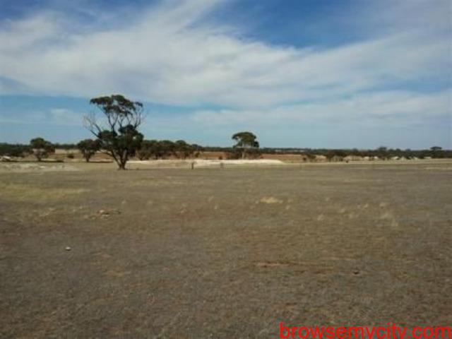Residential Property Site for Sale at Dholera (Gorasu)